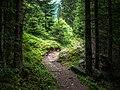 Ischgl - Wanderweg 01.jpg