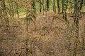 Isigatweiler-5935.jpg