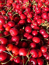 Cherry - Wikipedia