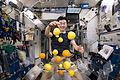 JAXA astronaut Kimiya Yui corrals the supply of fresh fruit that arrived on HTV-5.jpg