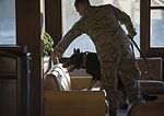 JBER military working dog teams hone their capabilities during annual certification 161014-F-YH552-058.jpg