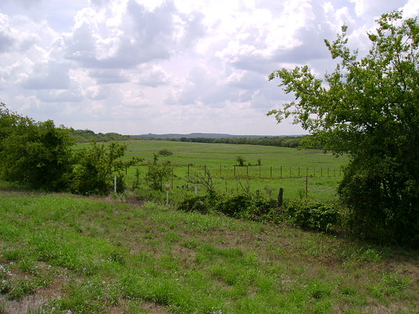 A landscape in eastern Jack County, Texas, typical of the Western Cross Timbers Jack County.JPG