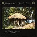 Jamaican Bush Hut, Jamaica, ca.1875-ca.1940 (imp-cswc-GB-237-CSWC47-LS11-038).jpg