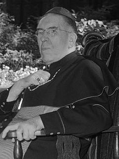 Johannes de Jong Catholic cardinal