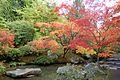 Japanese Garden (15877022761).jpg