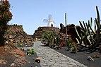 Jardín de cactus 7049.jpg