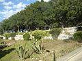 Jardin à Safi.jpg