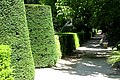 Jardin Botanico (16) (9379324784).jpg