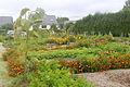 Jardin Ile aux idées IleTudy108.JPG