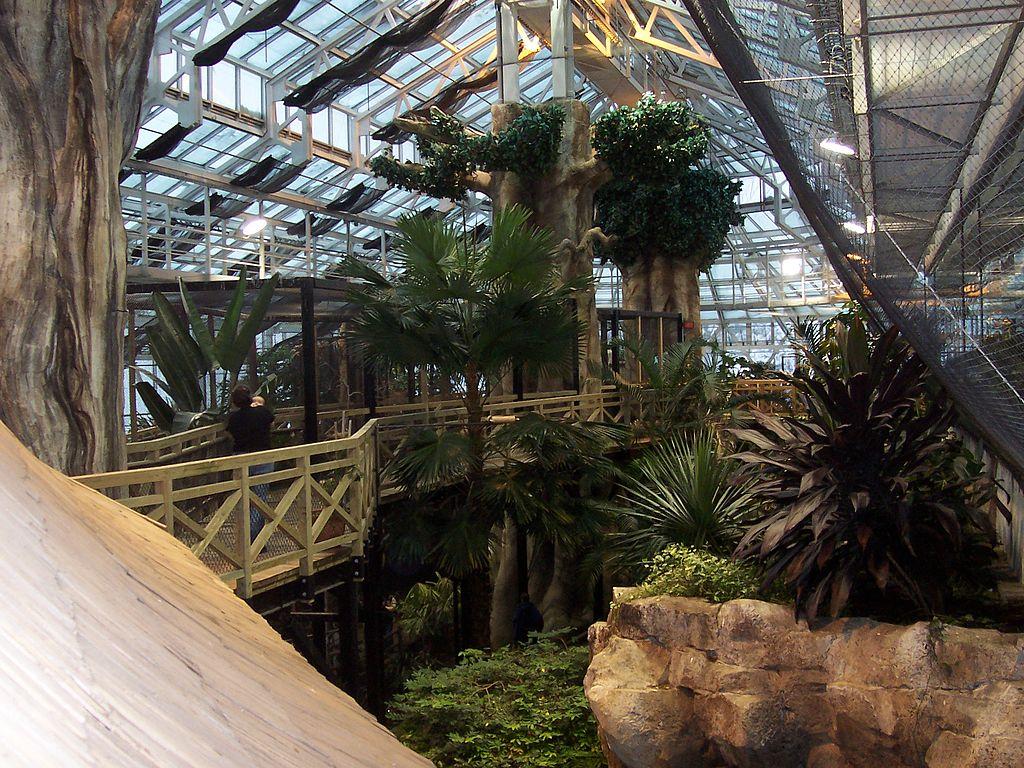 File jardin zoologique du qu bec serre 04 2006 02 jpg for Jardin zoologique