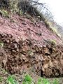 Jedburgh unconformity, close up 1.jpg