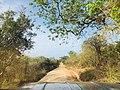 Jeep safari inside Yala National Park.jpg
