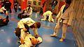 Jiu-Jitsu Brasileño.jpeg
