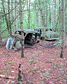 Junked Cars along the Trail.JPG