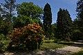 Kámoni Arborétum Szombathely Kamon Arboretum Park 07.jpg