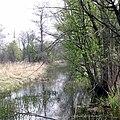 Kampinos-kanal Zaborowski.jpg