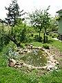 Kerti tó - Garden lake - panoramio.jpg