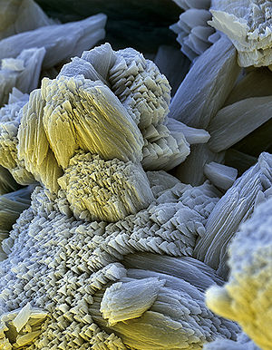 Limescale - Limescale (scanning electron microscopy micrograph, field of view 64 x 90 µm)