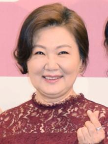 Kim Hae-sook - Wikipedia