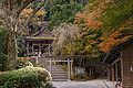 Kinpu-jinja Yoshino Nara04n3200.jpg