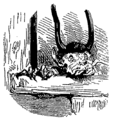 Kobold (Dictionnaire Infernal).png
