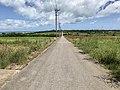 Kohama-sugar-road.jpg