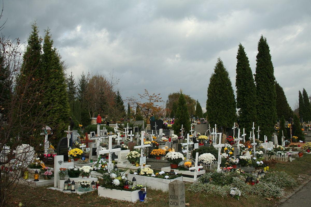 Mogilypl - cmentarz komunalny w s119dziszowie ma142opolskim