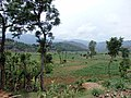 Kuntabesi, Mahadevsthan Mandan 45200, Nepal - panoramio (2).jpg