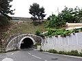 L'Estaque - Tunnel sous le viaduc ferroviaire du Marinier - Entrée nord.jpg