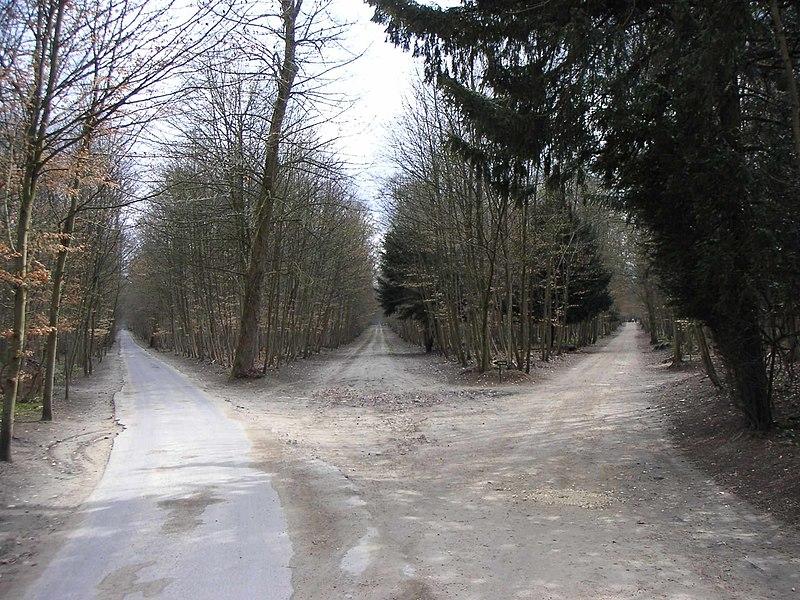 File:La route qui mène vers le coté obscur.jpg