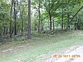 Lake Wildwood, Roberts Township, IL 61375, USA - panoramio (1).jpg