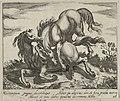 Landschap met twee vechtende paarden. NL-HlmNHA 1477 53011520.JPG