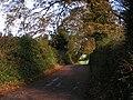 Lane to Bradninch - geograph.org.uk - 1589067.jpg
