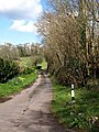 Lane to Harcombe - geograph.org.uk - 756409.jpg