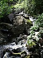 Launchy Gill Force - geograph.org.uk - 504334.jpg