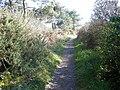 Le sentier cotier pointe du blaire a baden - panoramio.jpg