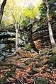 Ledges at Cuyahoga Valley National Park (10544324155).jpg