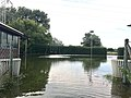 Leine flood Hemmingen 2017-07-28 flooded allotments in Harkenbleck.jpg