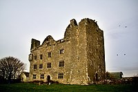 Lemaneagh Castle.jpg