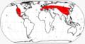 Leptomerycinae range.png