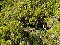 Levada 25 Fontes, Madeira, Portugal, June-July 2011 - panoramio (38).jpg