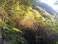 Lever de soleil au fond de la vallée de takamaka - panoramio.jpg