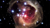 File:Light Echo Movie around V838 Monocerotis.webm