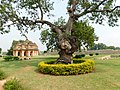 Lotus Mahal Pavilion1.jpg