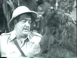 Lou Costello Africa Screams.JPG