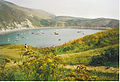 Lulworth Cove from the West. - geograph.org.uk - 200975.jpg