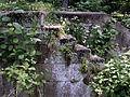 Lusk Lock Steps (Lisbon, OH) (5830600019).jpg