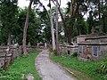 Lwów, Cmentarz Łyczakowski - panoramio (8).jpg