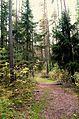 Märchenhafte Wanderwege.jpg