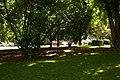 MADRID A.V.U. PASEO DEL PRADO-JARDINES - panoramio (13).jpg